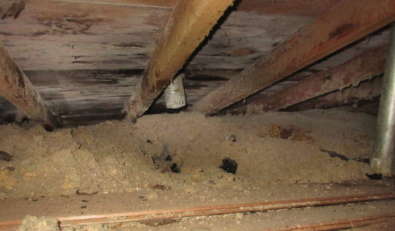Strickland Home Inspections uncovers Attic Vent Issues